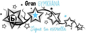 Logo Sigue tu estrella